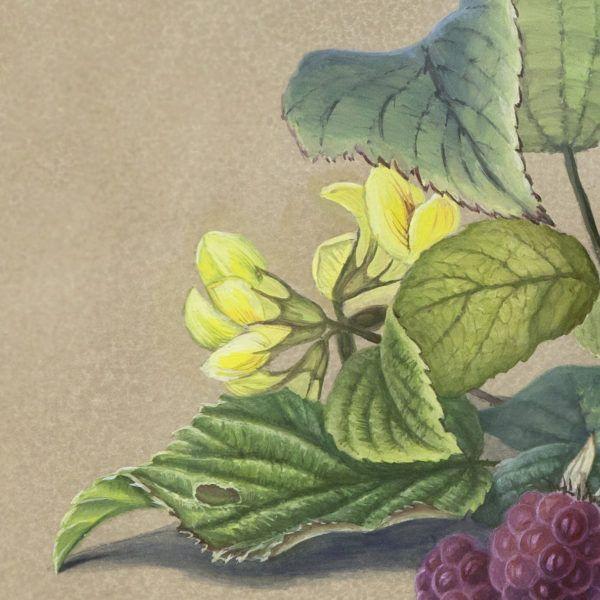 фрагмент реплики на картину Ф.Толстого