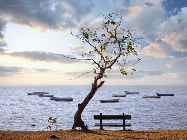 фото Маврикий,