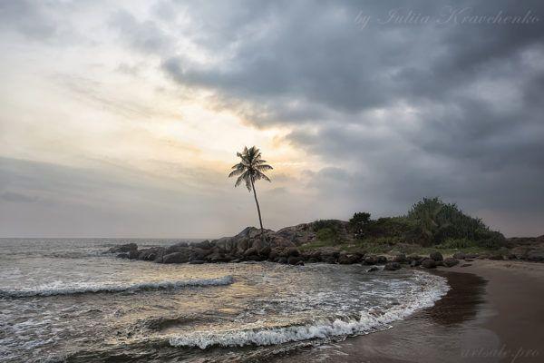 фото Шри Ланка,