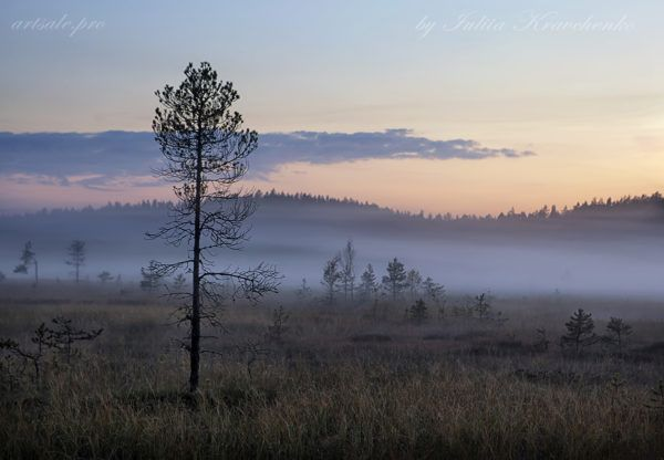 российские пейзажи