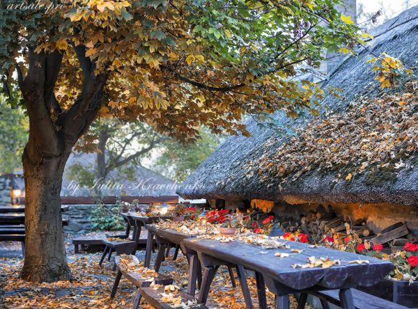 фото осень